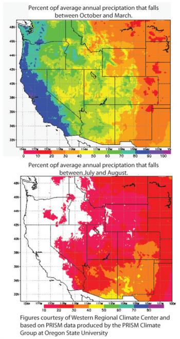 Temperature And Precipitation CLIMAS - Average winter temperature in arizona