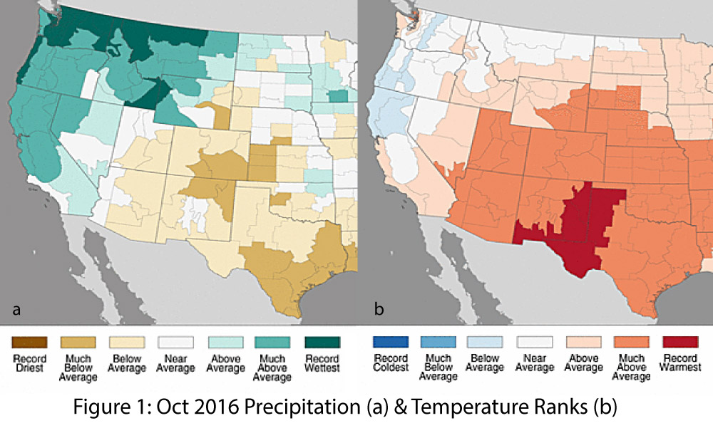 November Precipitation To Date Has Been Buoyed By Storm Events That Pushed In As Part Of A Cutoff Low This Rainfall May Boost The Percent Of Average